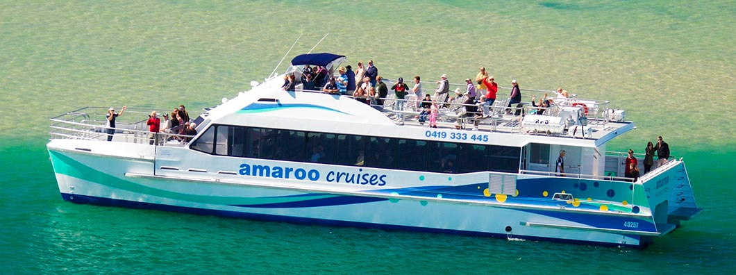Amaroo Whale Watching Cruises